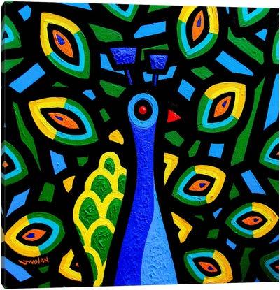 Peacock #2 Canvas Print #JNN25