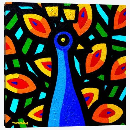 Peacock #3 Canvas Print #JNN26} by John Nolan Canvas Wall Art