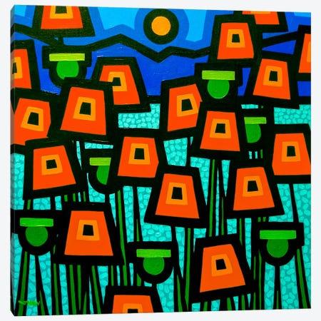Poppy Field Canvas Print #JNN28} by John Nolan Art Print