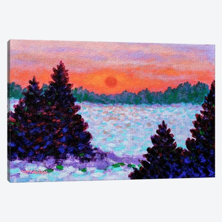 Snowscape Canvas Print #JNN29} by John Nolan Art Print