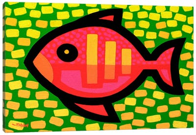 Big Fish Canvas Print #JNN2