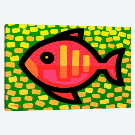 Big Fish Canvas Print #JNN2} by John Nolan Canvas Art Print
