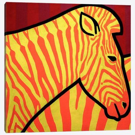 Cadmium Zebra Canvas Print #JNN3} by John Nolan Art Print