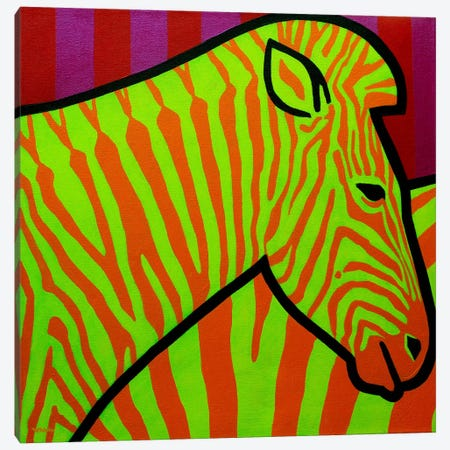 Cadmium Zebra II Canvas Print #JNN43} by John Nolan Canvas Art Print