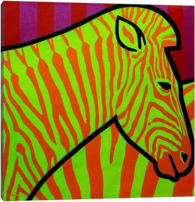 Cadmium Zebra II Canvas Art Print