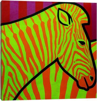 Cadmium Zebra II Canvas Art Print