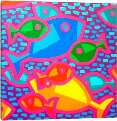 Funky Fish Canvas Art Print