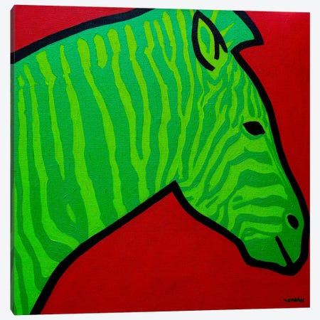 Irish Zebra Canvas Print #JNN45} by John Nolan Canvas Artwork