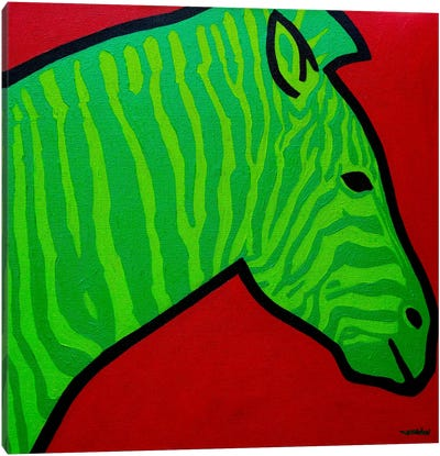 Irish Zebra Canvas Art Print