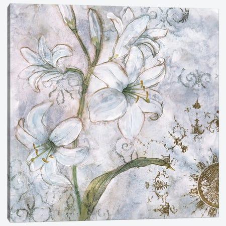 Floral Pearls I Canvas Print #JNO1} by James Nocito Canvas Art