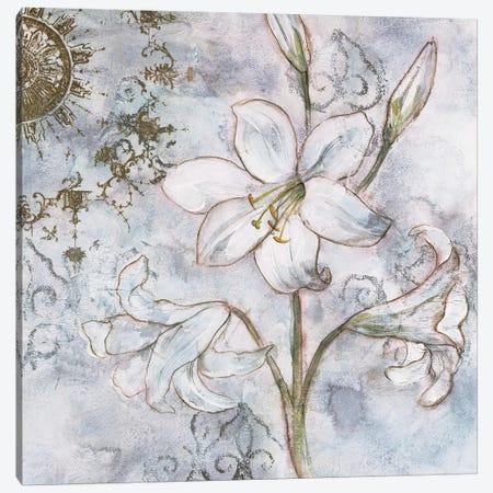 Floral Pearls II Canvas Print #JNO2} by James Nocito Canvas Wall Art