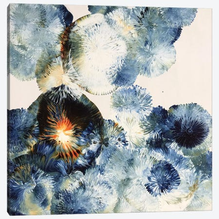 Bloom XI Canvas Print #JNR2} by Jen Glover Riggs Canvas Wall Art