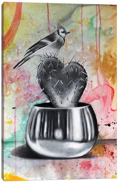 Cactus And Bird Canvas Art Print