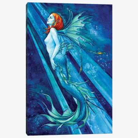 Fierce Beauty Canvas Print #JNW25} by Jane Starr Weils Canvas Print
