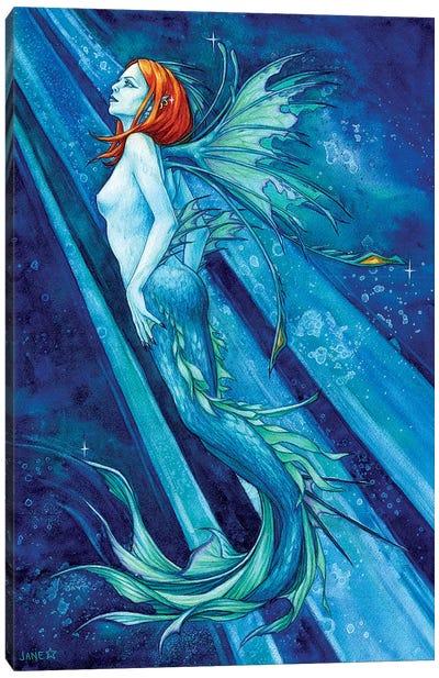 Fierce Beauty Canvas Art Print