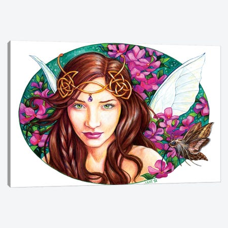 Mystical Pinks Canvas Print #JNW45} by Jane Starr Weils Art Print