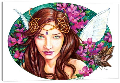 Mystical Pinks Canvas Art Print
