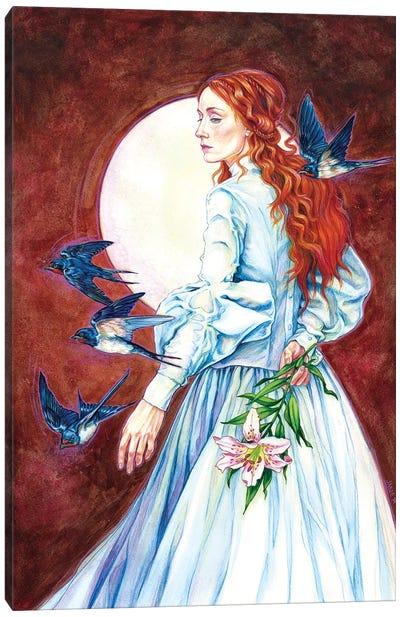 Barn Swallows Canvas Art Print