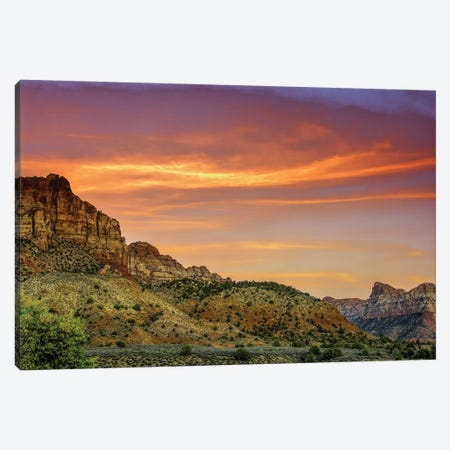 Cloudy Canyon Landscape, Zion National Park, Utah, USA Canvas Print #JOB4} by Jay O'Brien Canvas Art Print