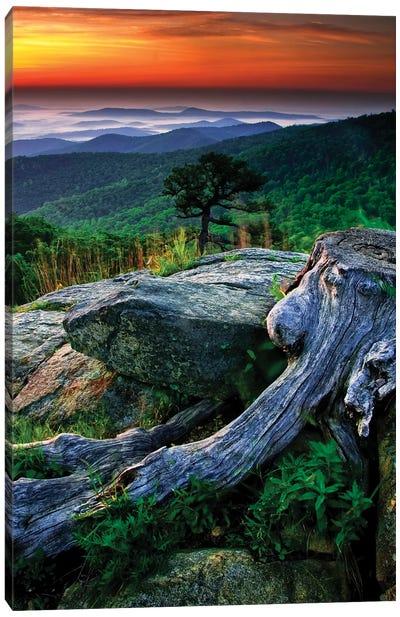 Sunrise Over The Fog-Covered Blue Ridge Mountains, Shenandoah National Park, Virginia, USA Canvas Art Print