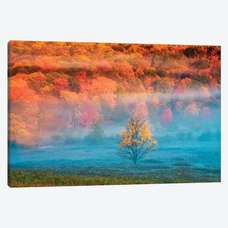 Misty Autumn Landscape, West Virginia, USA Canvas Print #JOB6} by Jay O'Brien Canvas Art Print