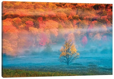 Misty Autumn Landscape, West Virginia, USA Canvas Art Print