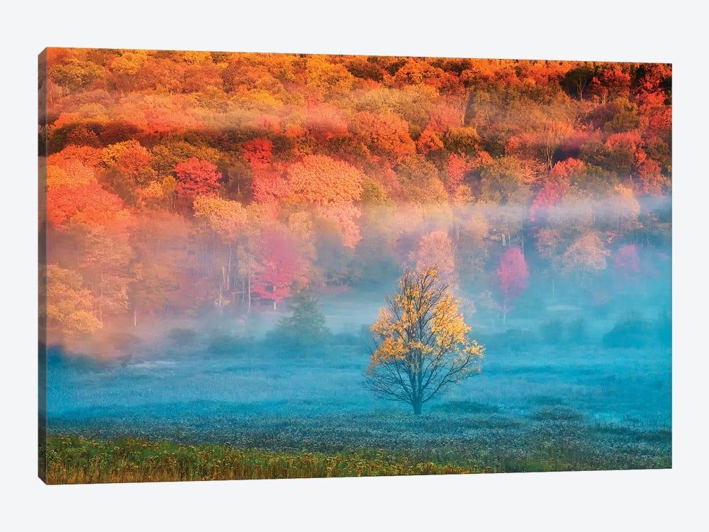Misty Autumn Landscape, West Virginia, USA by Jay O'Brien 1-piece Canvas Art