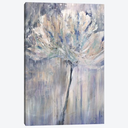 Sunlit Blossom Canvas Print #JOD13} by Jodi Maas Art Print