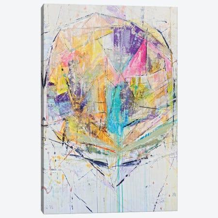 Crystal Cone Canvas Print #JOD21} by Jodi Maas Canvas Wall Art