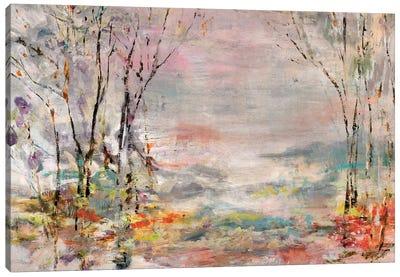 Unwalked Path Canvas Art Print
