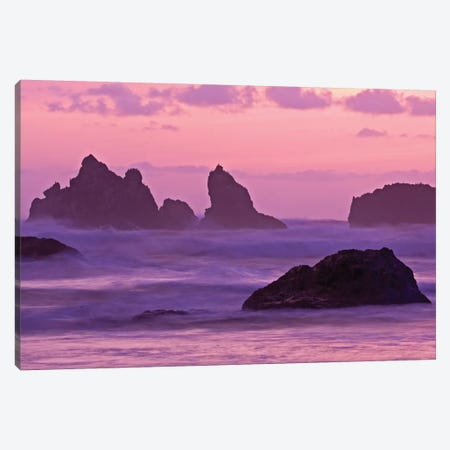 Sea Stacks At Sunset, Bandon State Natural Area, Coos County, Oregon, USA  Canvas Print #JOE3} by Joe Restuccia III Canvas Art Print