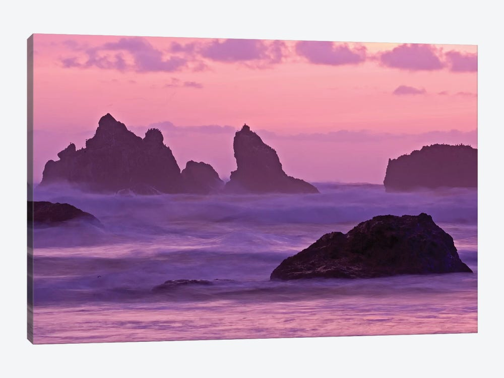 Sea Stacks At Sunset, Bandon State Natural Area, Coos County, Oregon, USA  by Joe Restuccia III 1-piece Canvas Art