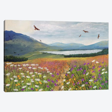 Red Kites Over Loch Tulla Canvas Print #JOG12} by Jo Grundy Canvas Art