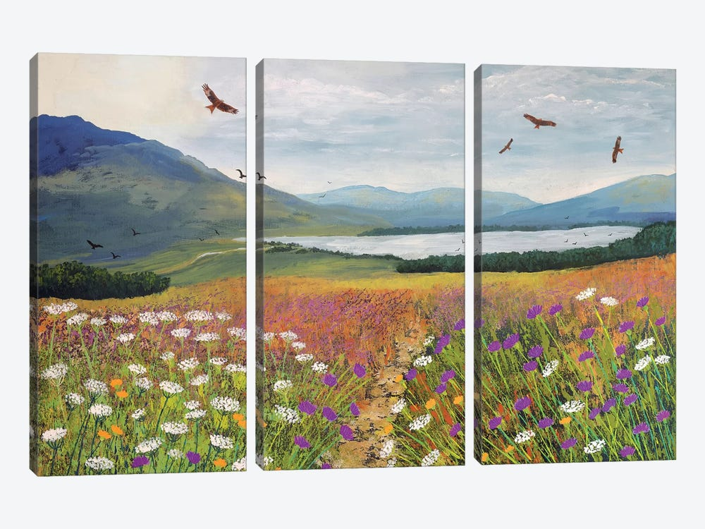 Red Kites Over Loch Tulla by Jo Grundy 3-piece Canvas Wall Art