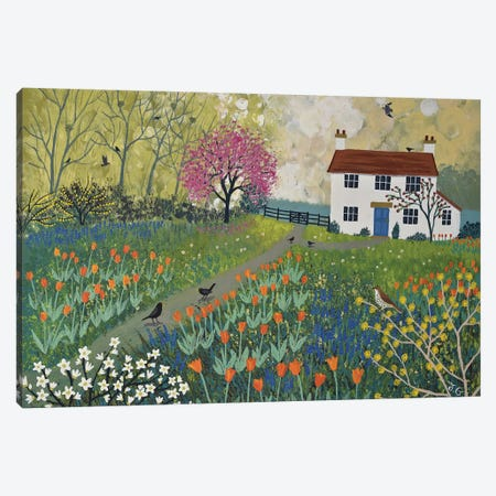 Spring At Tulip Cottage Canvas Print #JOG29} by Jo Grundy Art Print