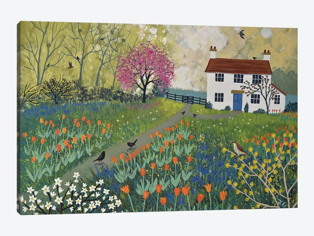 Spring At Tulip Cottage Canvas Art Print By Jo Grundy