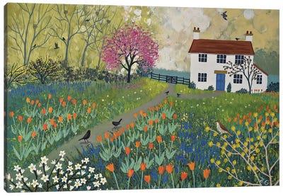 Spring At Tulip Cottage Canvas Art Print