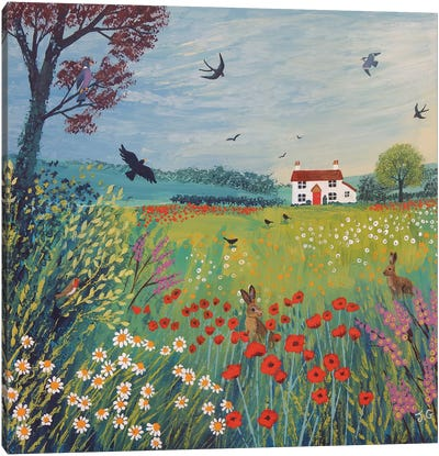 The House By Summer Meadow Canvas Art Print
