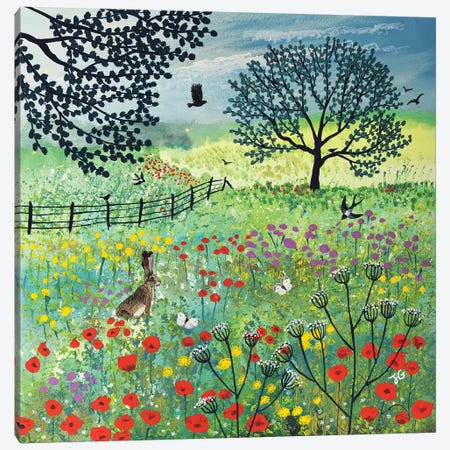 In Summer Meadow Canvas Print #JOG47} by Jo Grundy Canvas Art