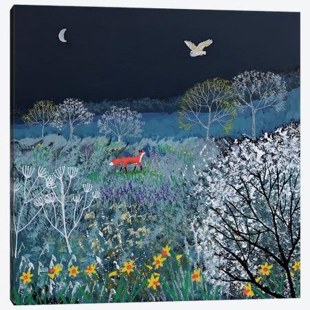 Spring Night Canvas Print #JOG55} by Jo Grundy Art Print