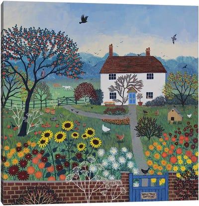 Apple Tree Cottage Canvas Art Print