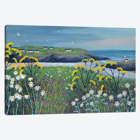 Headland Cottages Canvas Print #JOG62} by Jo Grundy Art Print