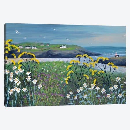 Headland Cottages Canvas Print #JOG62} by Jo Grundy Art Print