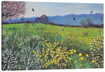 Spring Hope Canvas Art Print