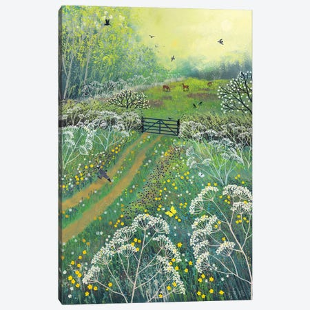 The Gate To May Meadow Canvas Print #JOG74} by Jo Grundy Canvas Art Print
