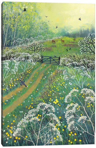 The Gate To May Meadow Canvas Art Print