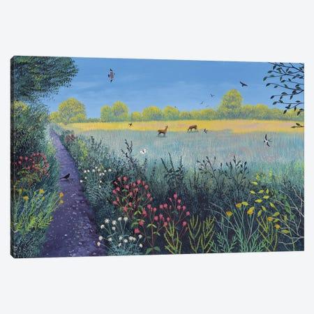 Down Summer Lane Canvas Print #JOG79} by Jo Grundy Canvas Artwork