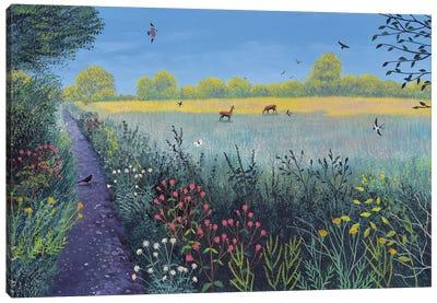 Down Summer Lane Canvas Art Print