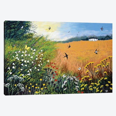 Harvest Swallows Canvas Print #JOG82} by Jo Grundy Art Print