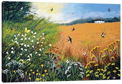 Harvest Swallows Canvas Art Print